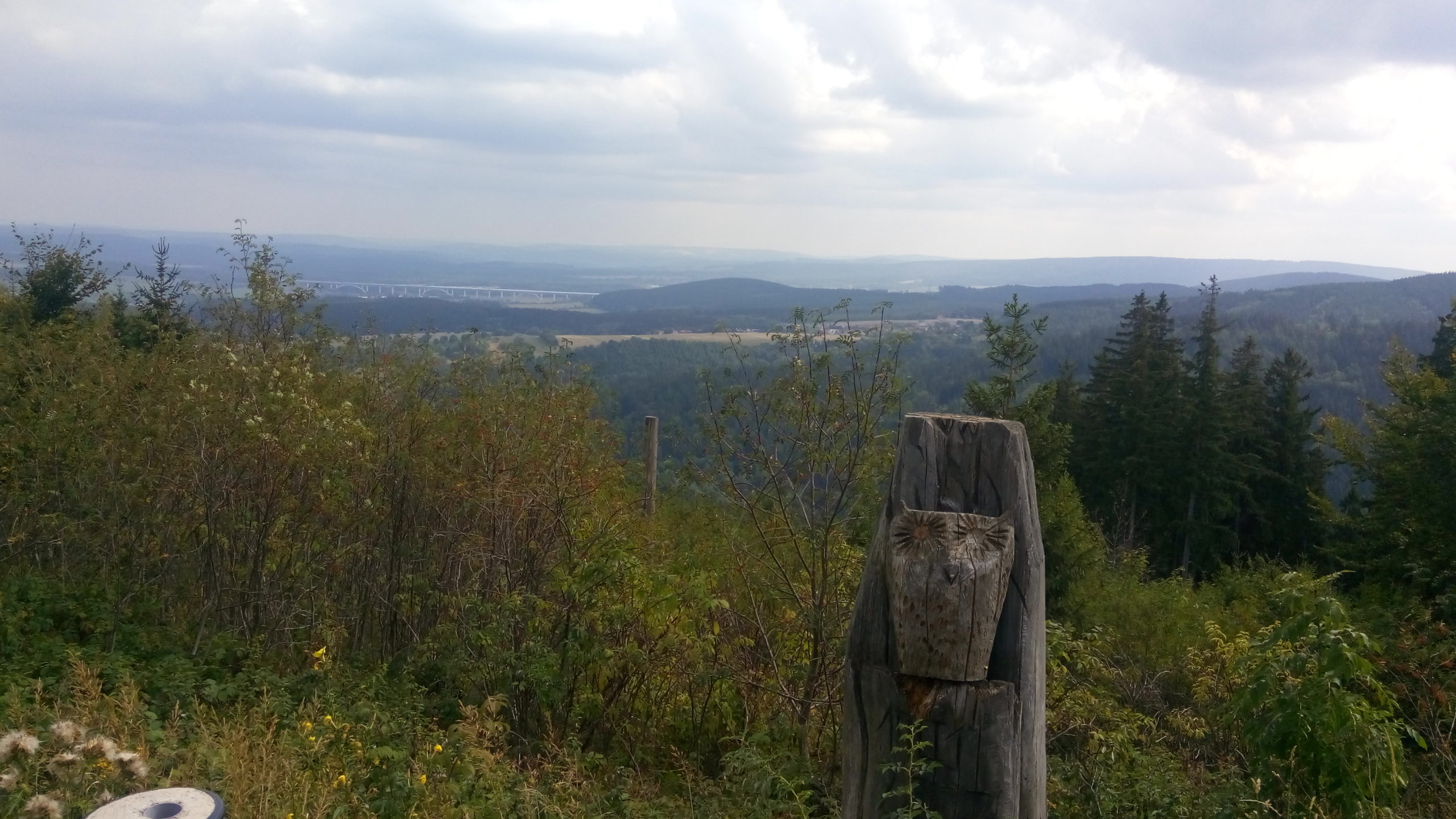 Ilmenau Forest from Above